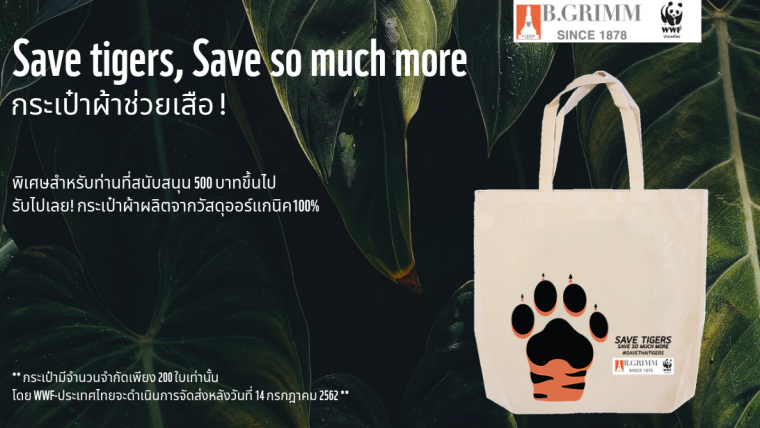 Save tiger, Save so much more